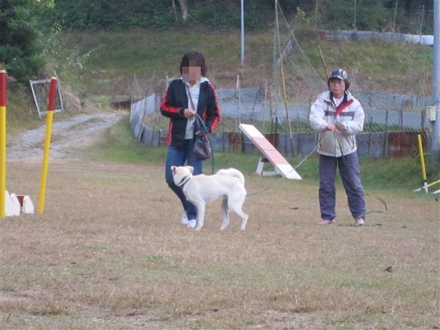 f:id:yasukazu01:20121031141350j:image