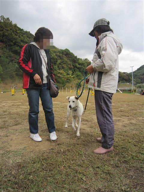 f:id:yasukazu01:20121031142641j:image