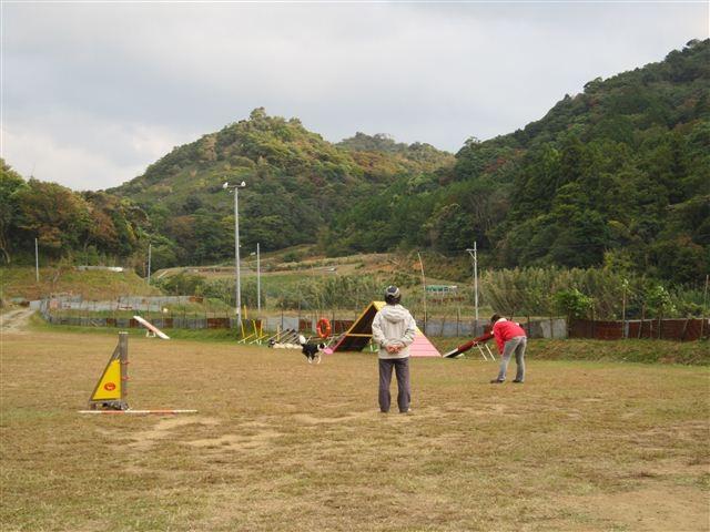 f:id:yasukazu01:20121031155017j:image