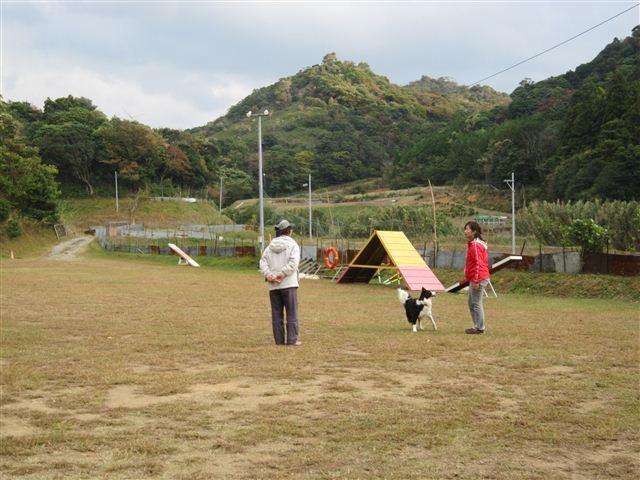 f:id:yasukazu01:20121031155030j:image