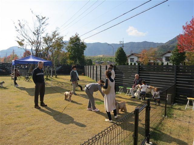 f:id:yasukazu01:20121103101846j:image