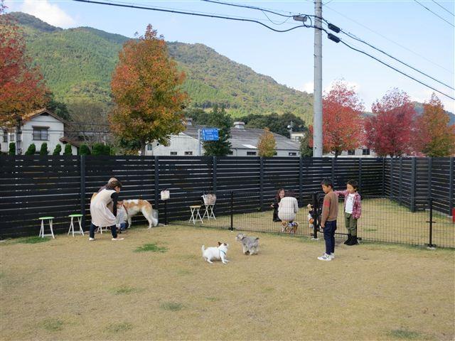 f:id:yasukazu01:20121103103811j:image