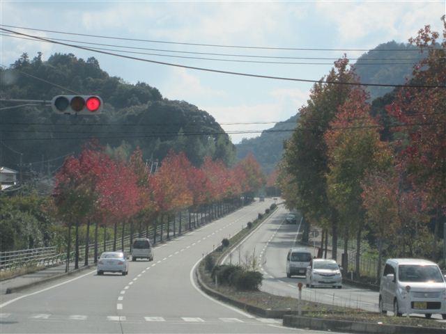 f:id:yasukazu01:20121103114024j:image