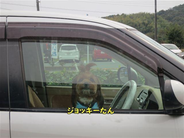 f:id:yasukazu01:20121104133501j:image