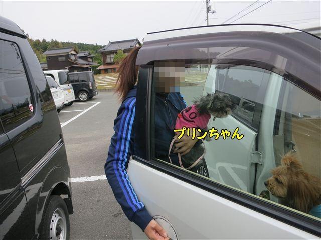 f:id:yasukazu01:20121104133546j:image