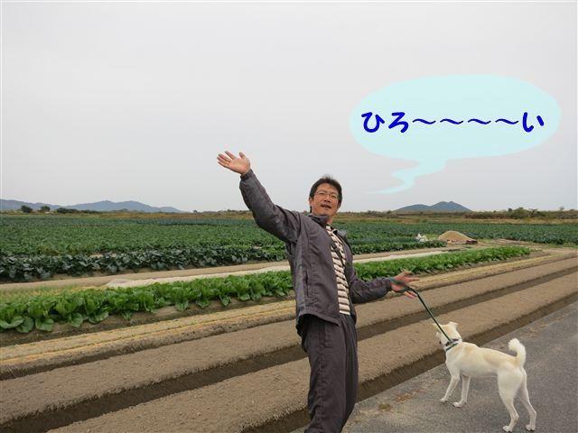 f:id:yasukazu01:20121104140324j:image