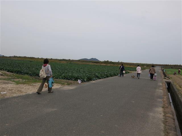 f:id:yasukazu01:20121104140346j:image