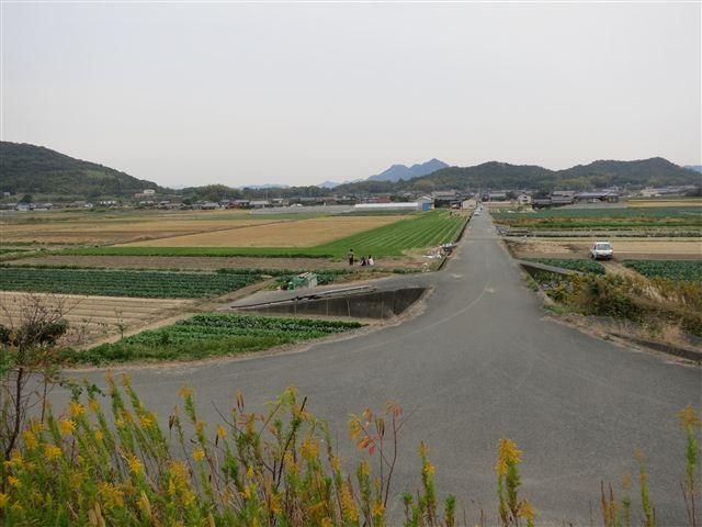 f:id:yasukazu01:20121104151149j:image