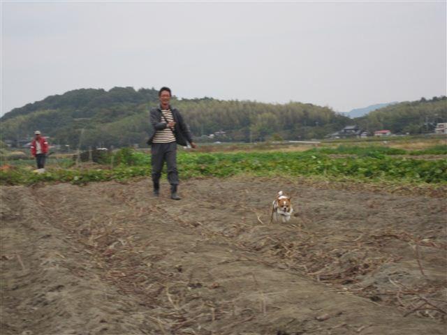 f:id:yasukazu01:20121104152947j:image