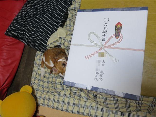 f:id:yasukazu01:20121111201122j:image