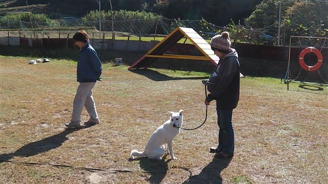 f:id:yasukazu01:20121116124055j:image
