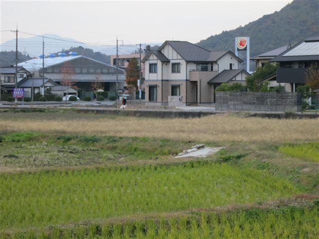 f:id:yasukazu01:20121119162630j:image