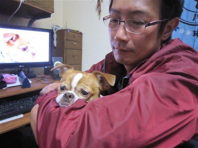 f:id:yasukazu01:20121121212141j:image