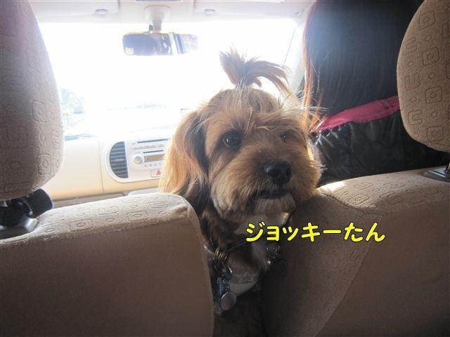 f:id:yasukazu01:20121125100249j:image