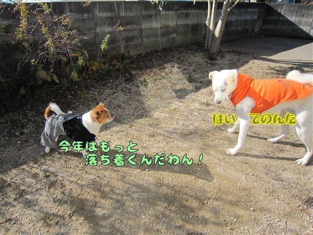 f:id:yasukazu01:20121211101755j:image