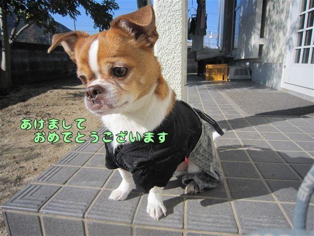 f:id:yasukazu01:20121211102055j:image