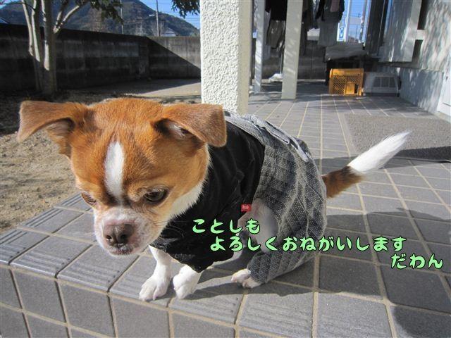 f:id:yasukazu01:20121211102346j:image