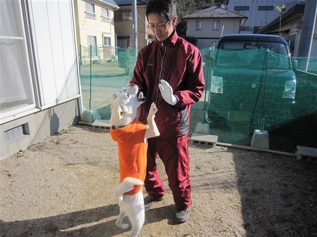 f:id:yasukazu01:20121211102809j:image