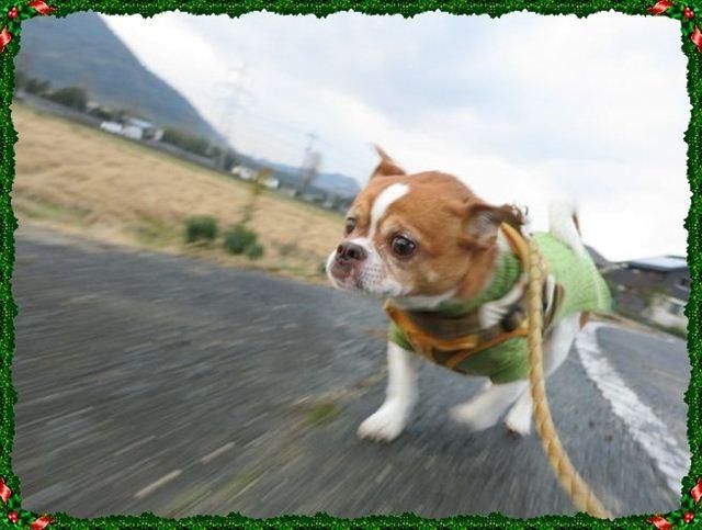 f:id:yasukazu01:20121225170531j:image