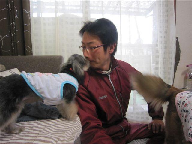 f:id:yasukazu01:20121230135401j:image