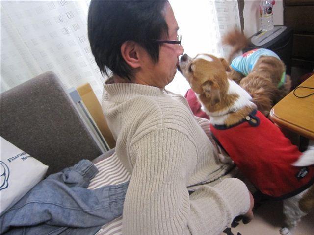 f:id:yasukazu01:20121230142857j:image