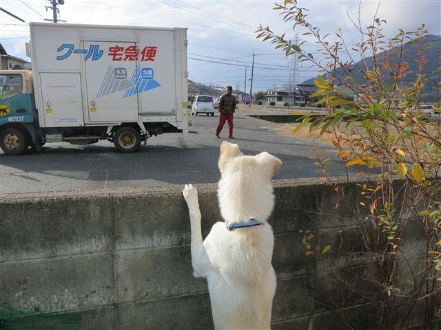 f:id:yasukazu01:20130104100616j:image