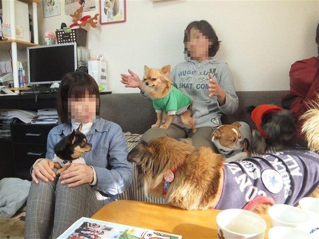 f:id:yasukazu01:20130114151352j:image