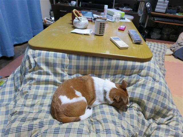 f:id:yasukazu01:20130122183307j:image