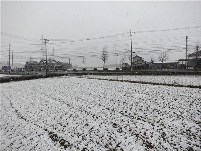 f:id:yasukazu01:20130125095339j:image