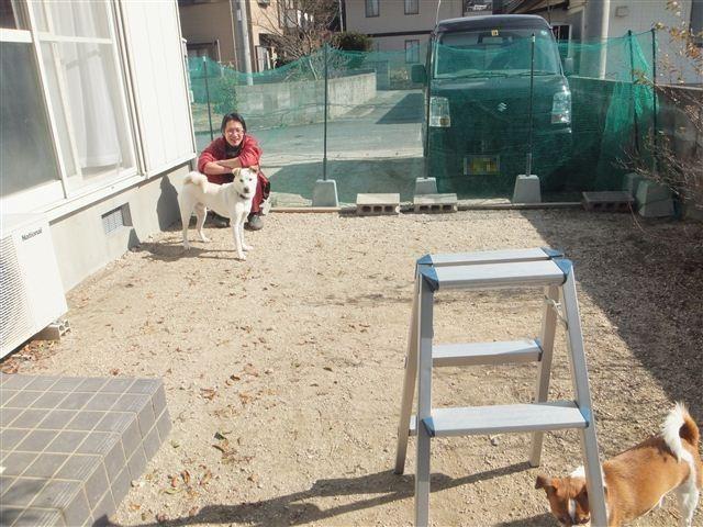 f:id:yasukazu01:20130128121738j:image