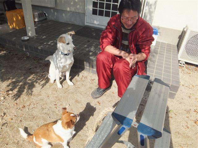 f:id:yasukazu01:20130128122612j:image