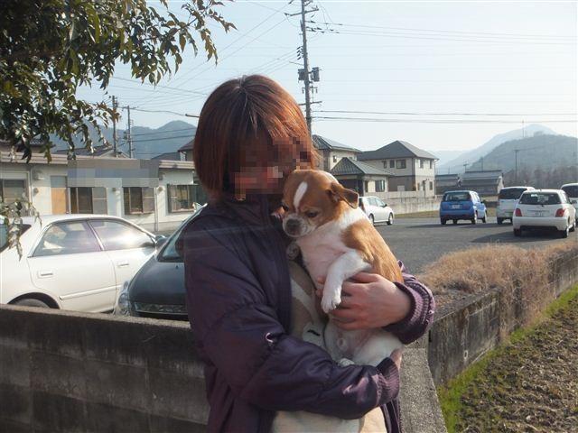 f:id:yasukazu01:20130131144100j:image