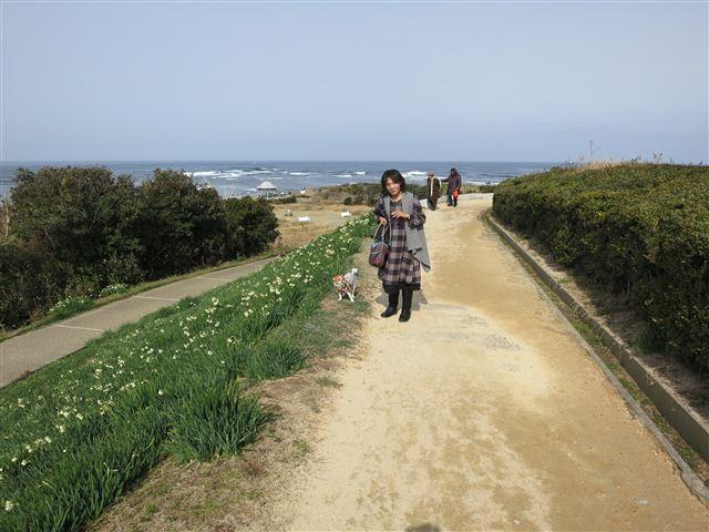 f:id:yasukazu01:20130203121723j:image