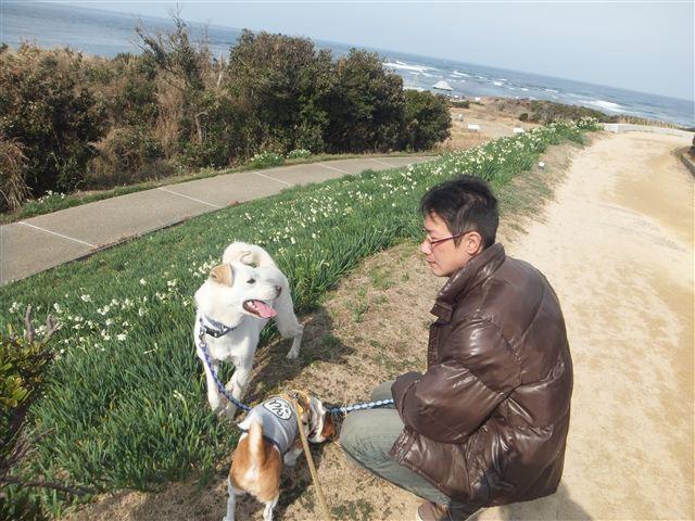 f:id:yasukazu01:20130205214839j:image