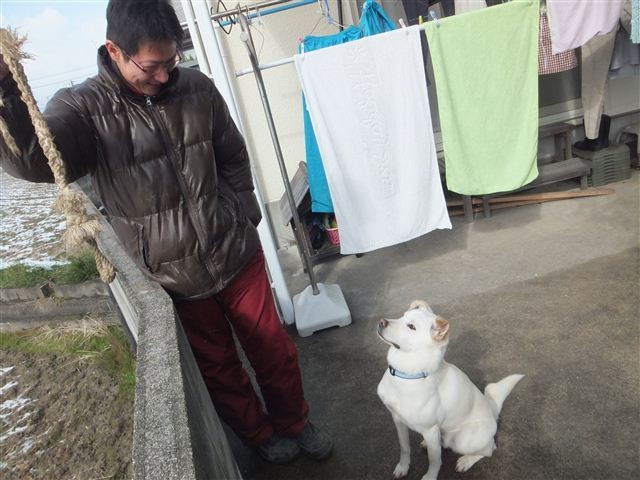 f:id:yasukazu01:20130208135526j:image