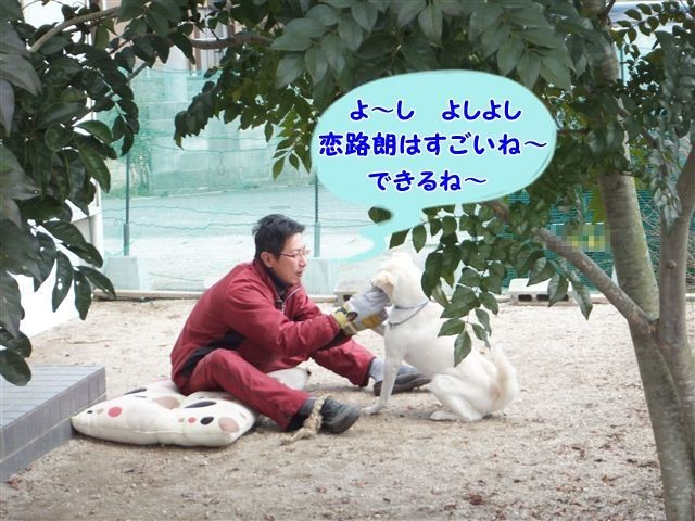 f:id:yasukazu01:20130213122356j:image