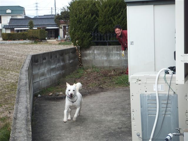 f:id:yasukazu01:20130213123122j:image
