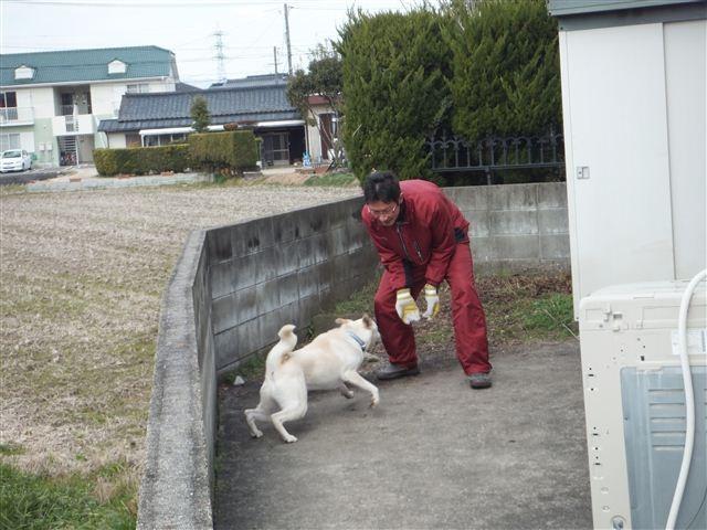 f:id:yasukazu01:20130213123143j:image
