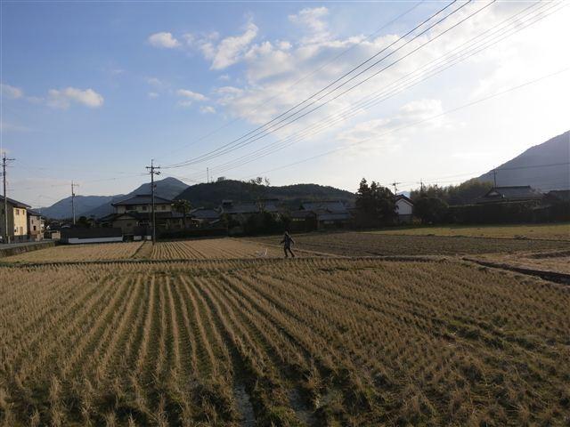 f:id:yasukazu01:20130213162341j:image