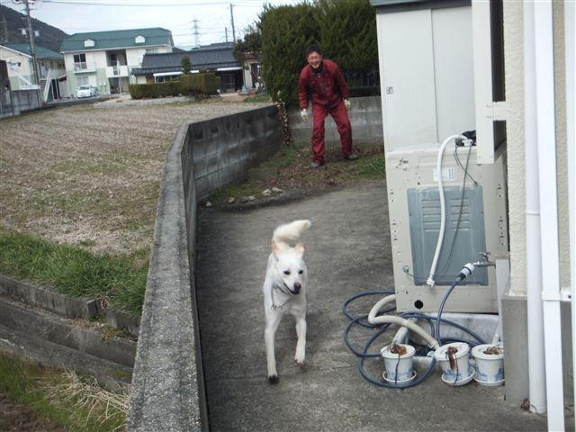 f:id:yasukazu01:20130218205336j:image