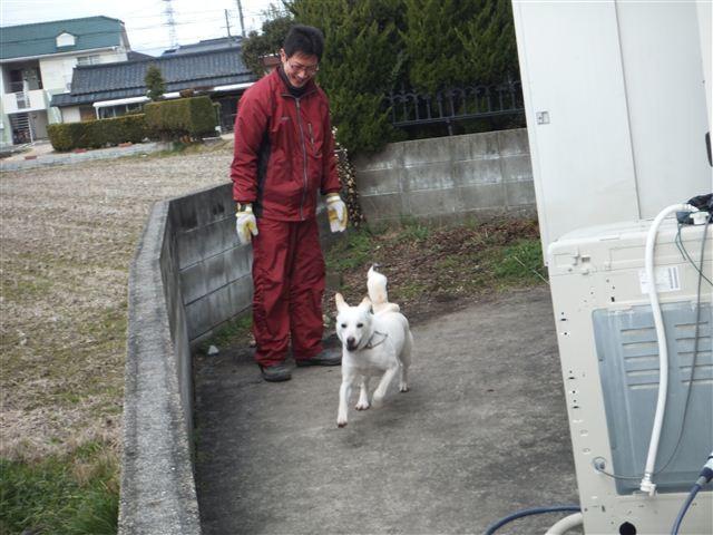 f:id:yasukazu01:20130218210951j:image