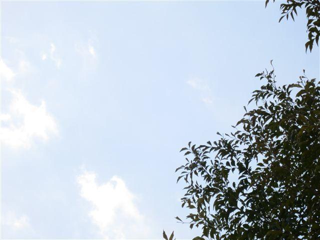 f:id:yasukazu01:20130222121448j:image