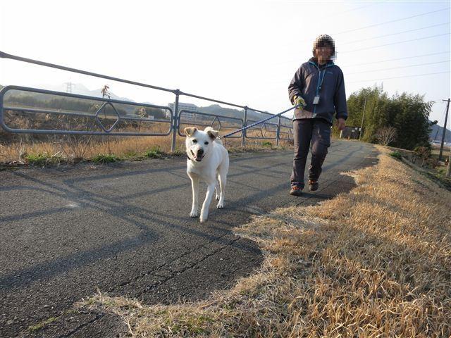 f:id:yasukazu01:20130222163159j:image