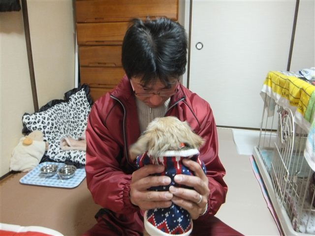 f:id:yasukazu01:20130304113759j:image