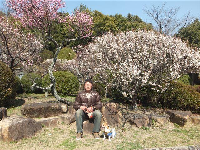 f:id:yasukazu01:20130304140854j:image