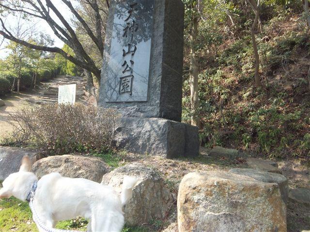 f:id:yasukazu01:20130305213012j:image