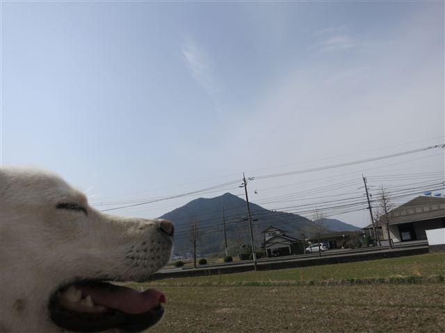 f:id:yasukazu01:20130308113814j:image