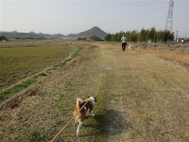 f:id:yasukazu01:20130308154543j:image