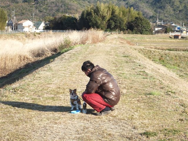 f:id:yasukazu01:20130314164655j:image