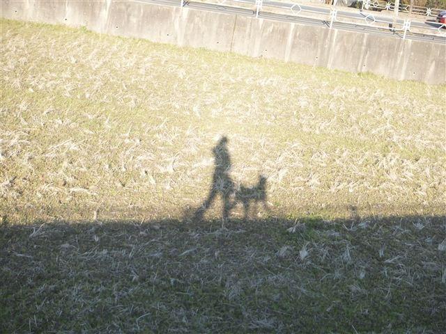 f:id:yasukazu01:20130314171113j:image